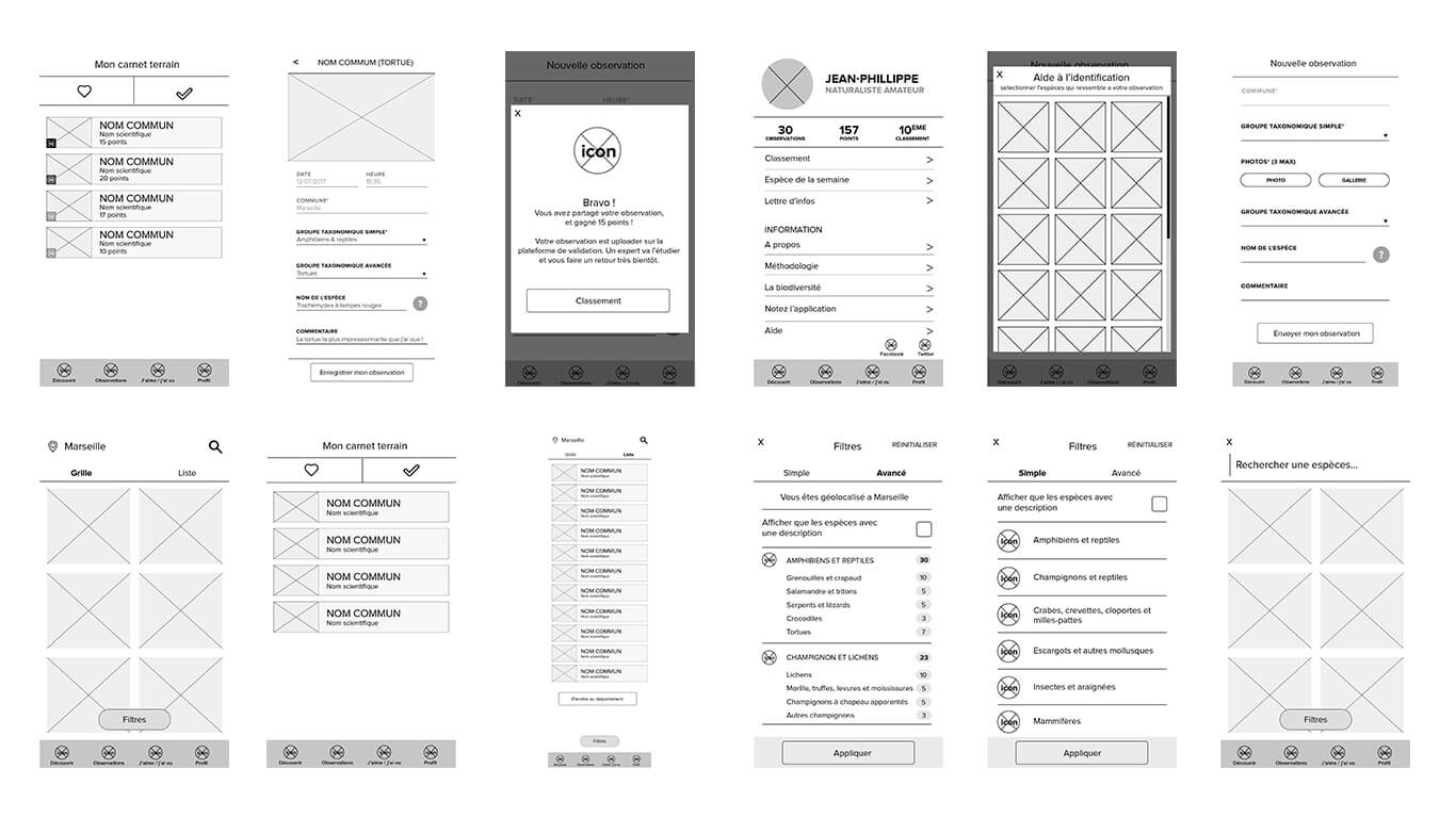wireframes INPN especes