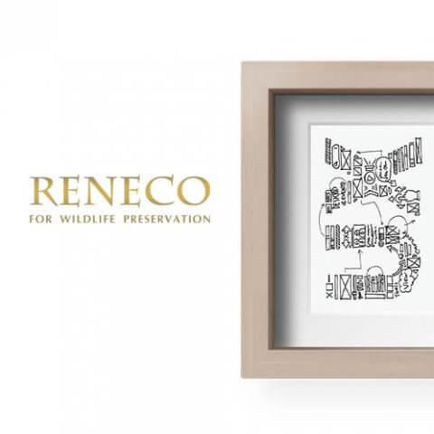 UX Reneco